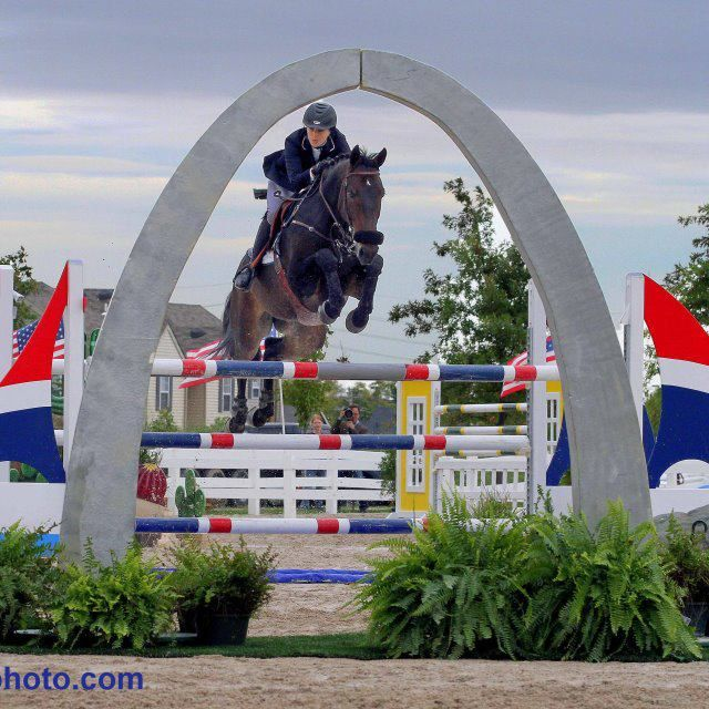 2018 St Louis National Charity Horse Show St Louis
